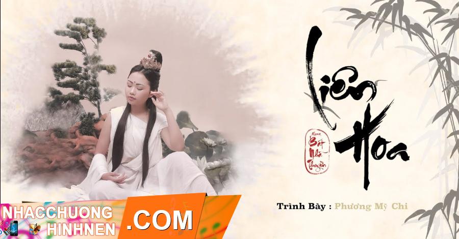 nhac chuong lien hoa phuong my chi