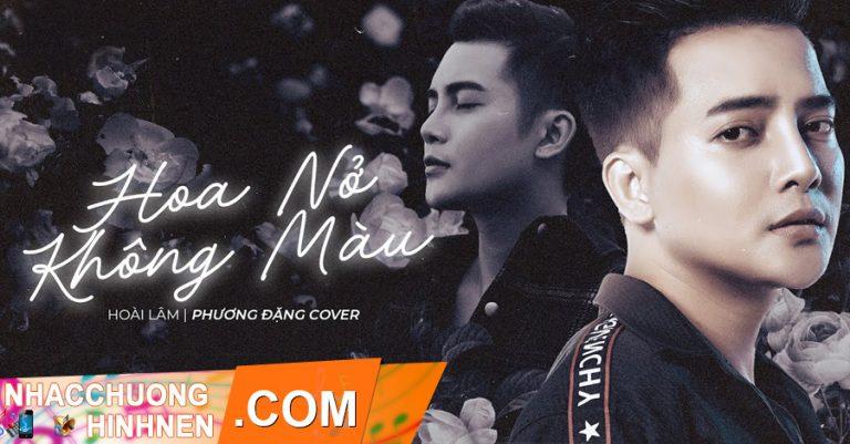 nhac chuong hoa no khong mau remix phuong dang cover